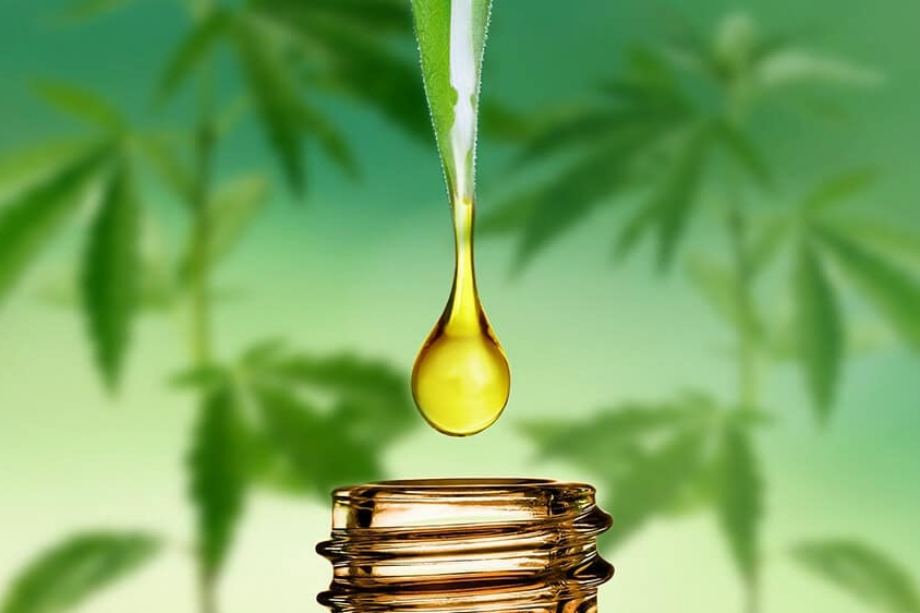 10 Facts about CBD