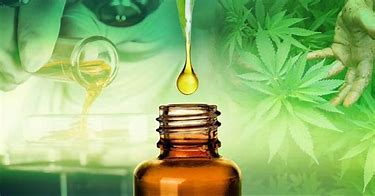 Bioavailability of CBD Products