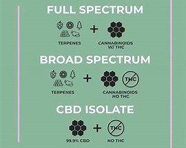 Why Flavoured CBD Tinctures?